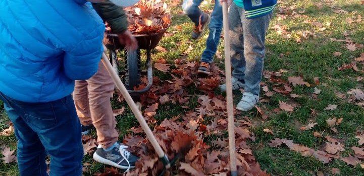 8.11.2018 – Jesenné upratovanie v ŠKD