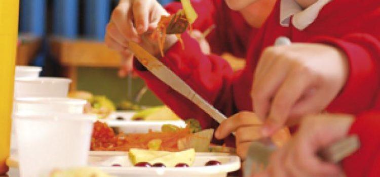 Dotácia na stravu (obedy zadarmo) alebo daňový bonus na dieťa